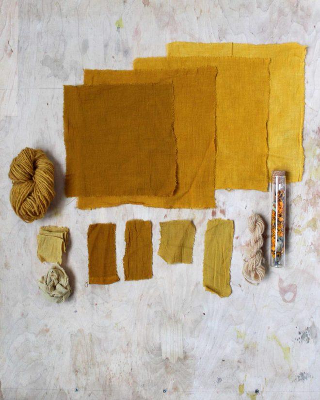 Baumwolle und Wolle mit Tagetes gefaerbt