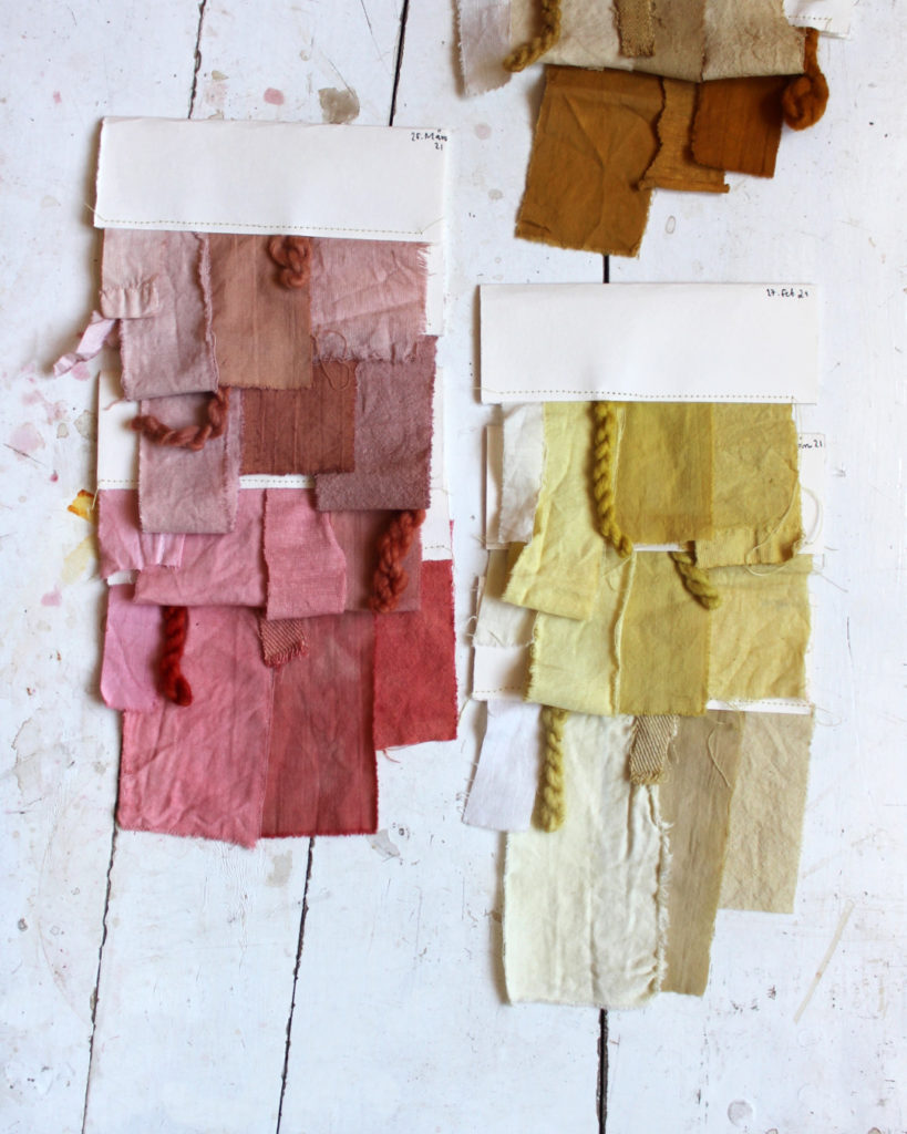 Dye samples from dyeing with plants: madder root, weld, marigold flowers