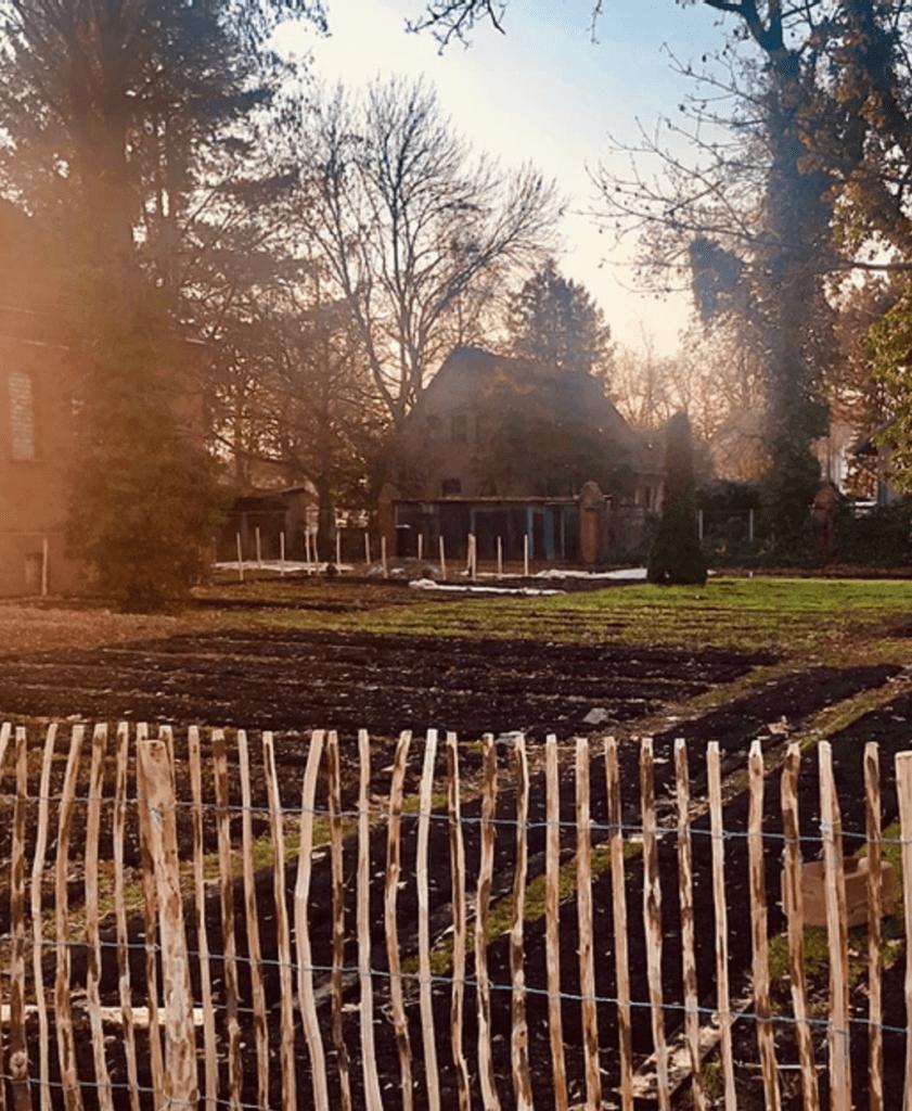 Mayda Blumenfarm in Pankow